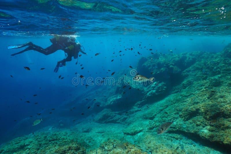 Sporttaucher erwachsen mit Kinderblickfischen unter Wasser stockbild