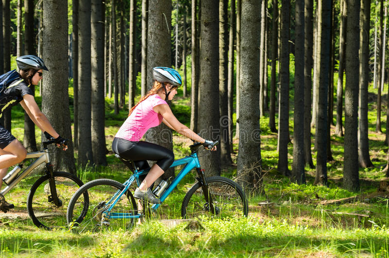 Sporty biking couple in woods royalty free stock image