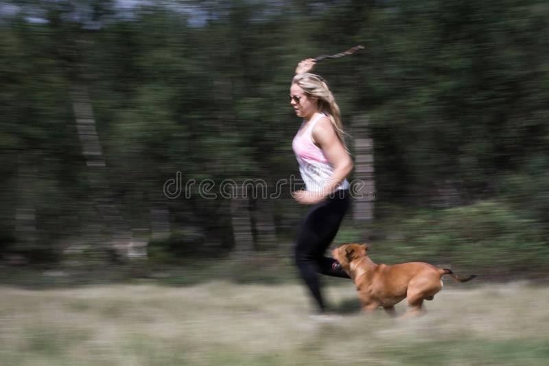 Sporty girl and her dog/pet are running and playing with a stick outdoors in the forest. Playtime and sport concept stock image