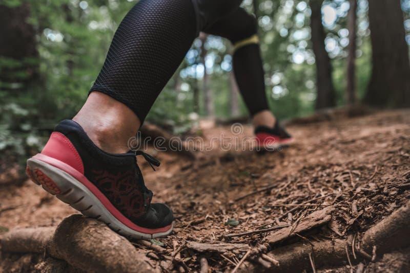 Sporty kobiet wspinaczki na lasowej ścieżce obrazy stock
