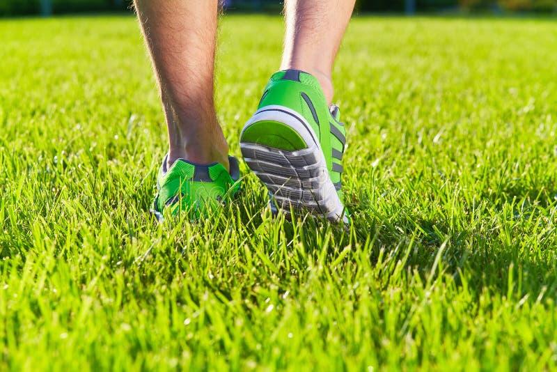 Sporty kują sneakers na świeżym zielonej trawy polu obrazy stock