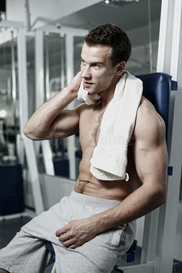 Sporty man posing in gym. Muscle sporty man in fym royalty free stock photography