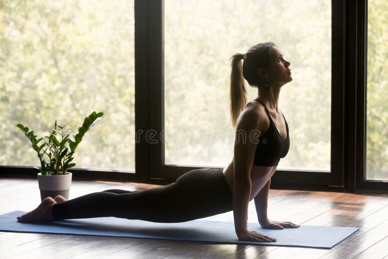 Sporty woman doing upward facing dog exercise. Young sporty woman practicing yoga, doing upward facing dog exercise, Urdhva mukha shvanasana pose, working out stock image