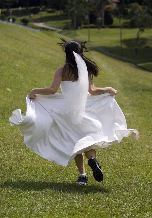 Sposa 1 di instabilità immagine stock