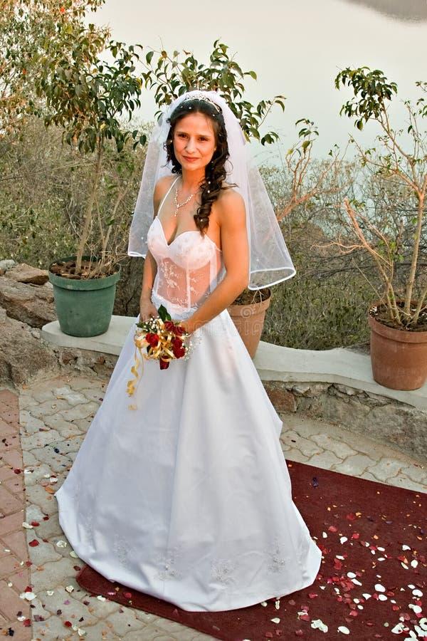 Download Sposa fotografia stock. Immagine di brunette, unione, femminile - 3149074