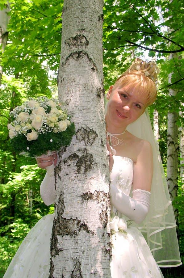 Download Sposa 6 fotografia stock. Immagine di nave, albero, occhiata - 211250