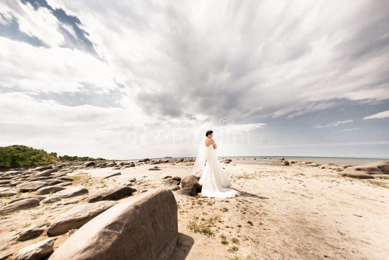 Sposa alla moda che sta indietro sul bello paesaggio del mare immagini stock libere da diritti