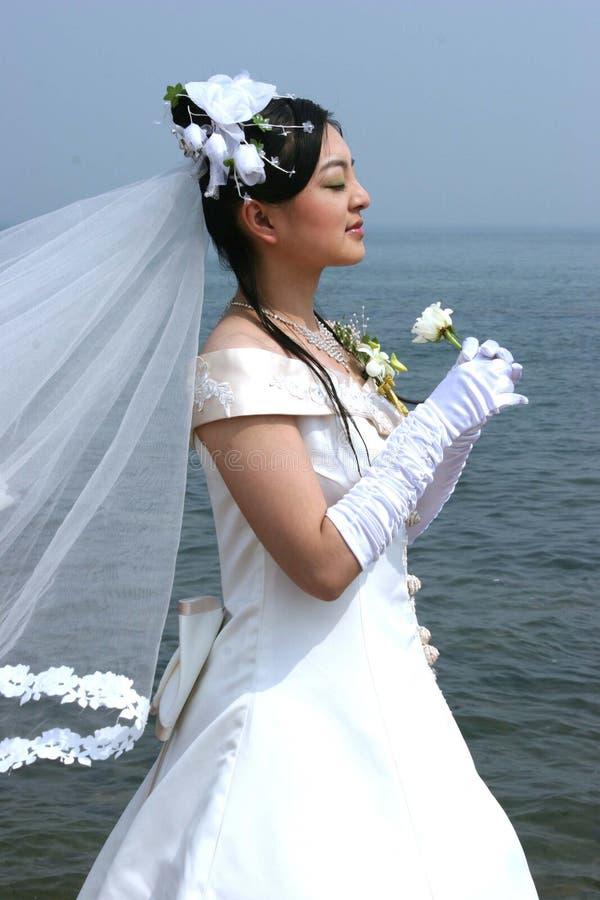 sposa asiatica fotografie stock