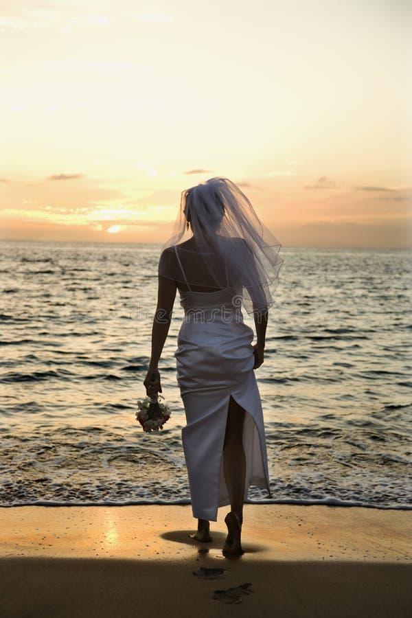 Sposa che si leva in piedi sulla spiaggia fotografie stock libere da diritti