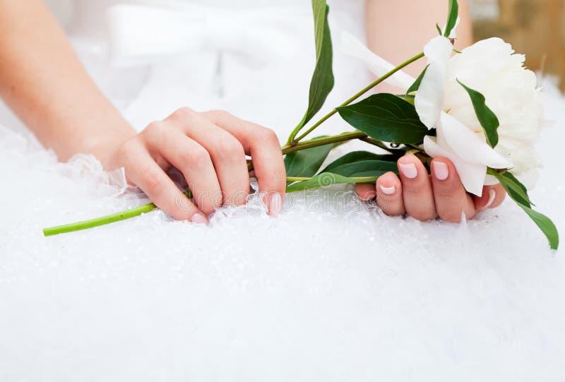 Sposa con il peony in mani fotografie stock libere da diritti