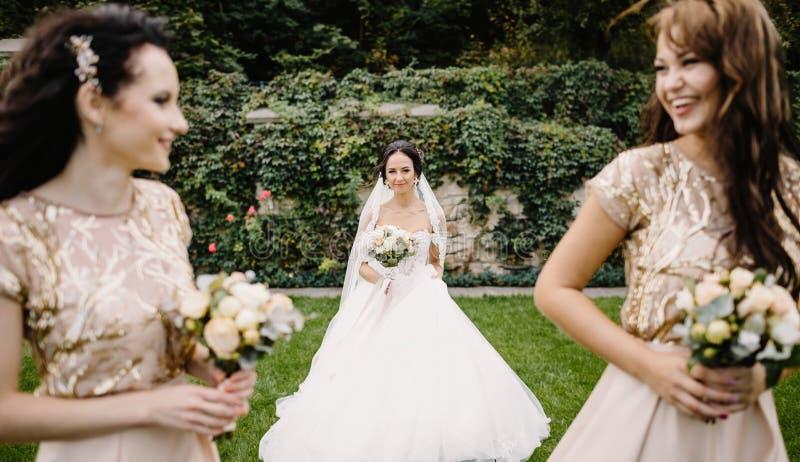 Sposa con le damigelle d'onore sul parco sul giorno delle nozze immagine stock