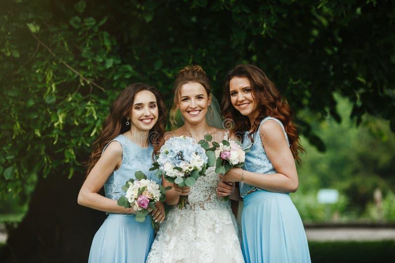 Sposa con le damigelle d'onore sul parco sul giorno delle nozze fotografia stock