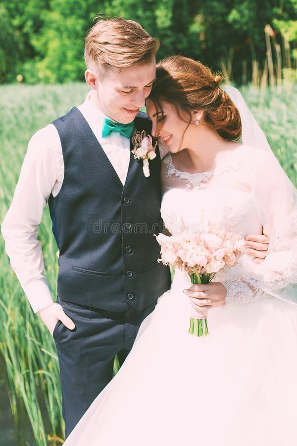 Sposa d'abbraccio dello sposo al giorno soleggiato fotografia stock