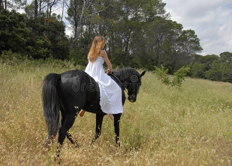 Sposa e cavallo immagini stock