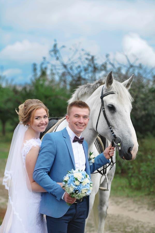 Sposa e sposo accanto ad un bello purosangue sul prato inglese fotografie stock libere da diritti