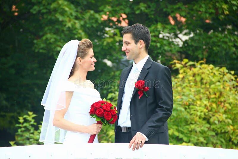 Download Sposa E Sposo Che Se Lo Esaminano Fotografia Stock - Immagine di uomini, celebrazione: 56885032