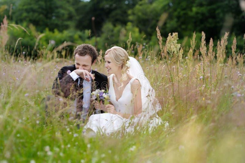 Sposa e sposo che si siedono in un prato immagini stock libere da diritti