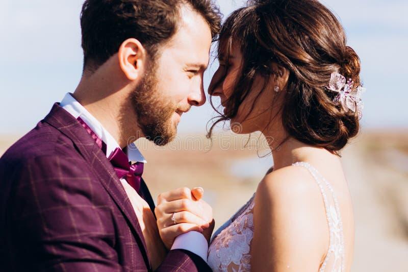 Sposa e sposo di amore di bacio felice insieme fotografia stock
