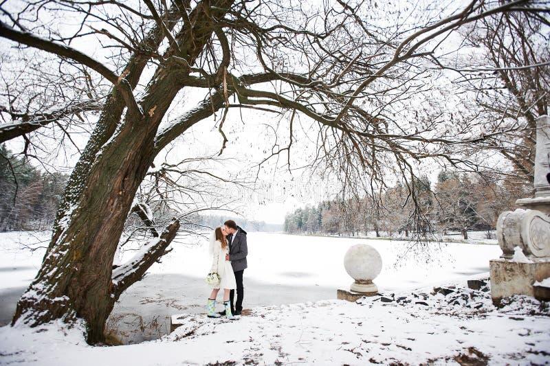 Sposa e sposo di bacio nel paesaggio di inverno immagine stock libera da diritti