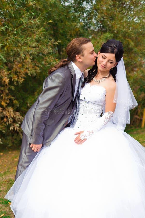 Sposa e sposo felici immagine stock