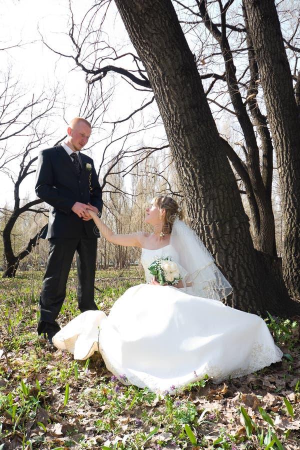 Sposa e sposo felici fotografie stock
