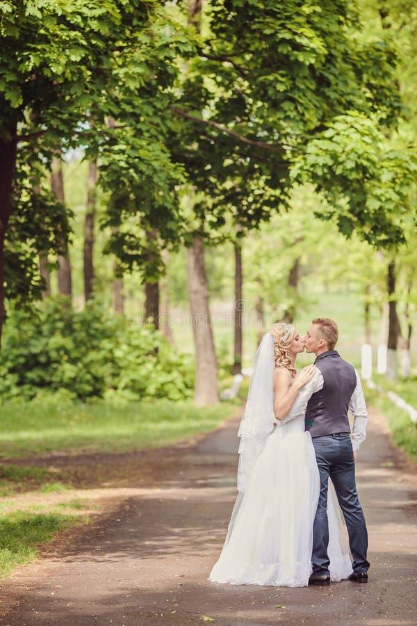 Sposa e sposo Kissing nel parco immagini stock