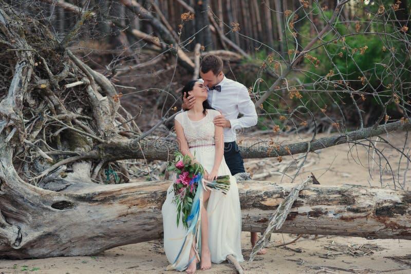 Sposa e sposo sul sorriso della natura fotografia stock libera da diritti