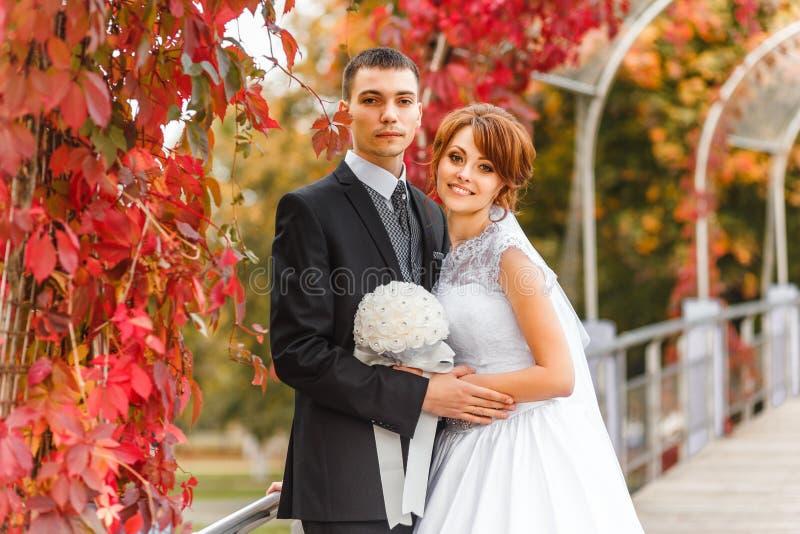 Sposa e sposo sulla camminata fotografia stock libera da diritti