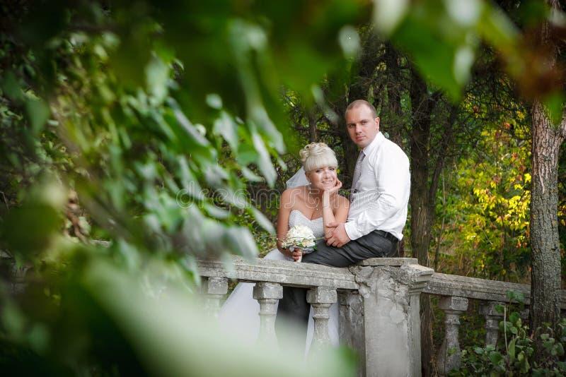 Sposa elegante e sposo che posano insieme all'aperto fotografie stock libere da diritti