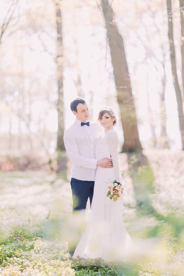 Sposa elegante e sposo che posano insieme all'aperto sul giorno delle nozze fotografie stock