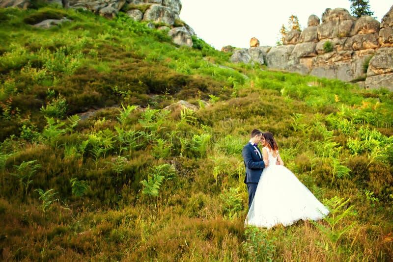 Sposa elegante e sposo che posano insieme all'aperto sulle nozze da immagini stock libere da diritti