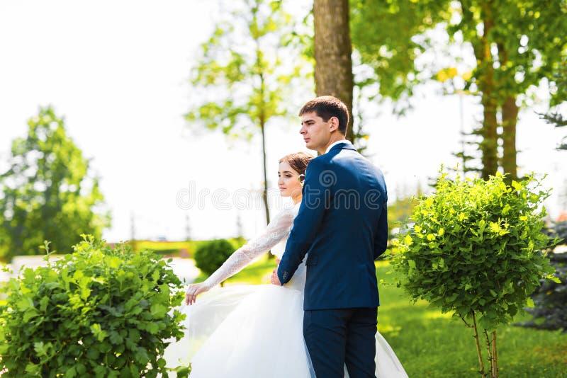 Sposa europea e sposo che abbracciano nel parco immagine stock libera da diritti