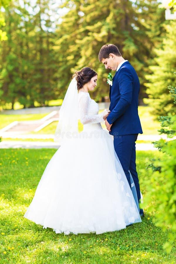 Sposa europea e sposo che abbracciano nel parco immagini stock