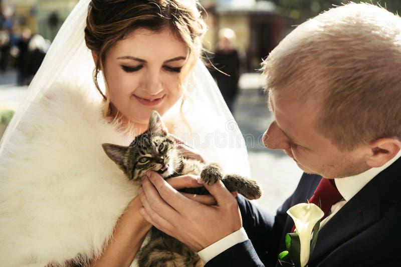 Sposa felice e sposo alla moda che tengono piccolo corredo dolce adorabile fotografia stock