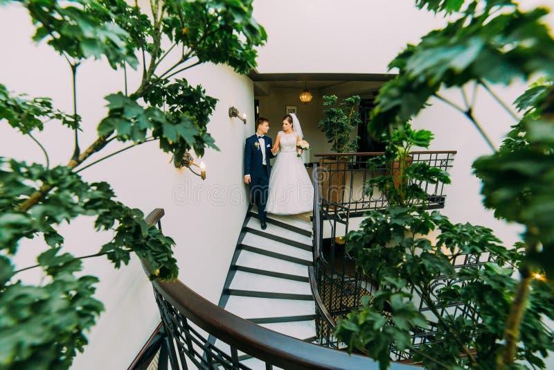Sposa felice e sposo che vanno giù dalle scale Foglie della pianta verde su una priorità alta fotografia stock