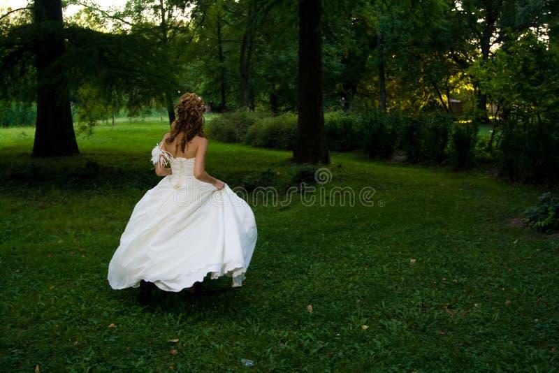 Sposa nel concetto del vestito da cerimonia nuziale fotografia stock libera da diritti