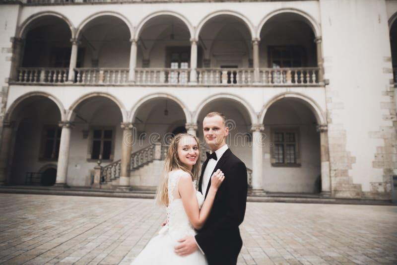 Sposa perfetta delle coppie, sposo che posa e che bacia nel loro giorno delle nozze immagini stock libere da diritti