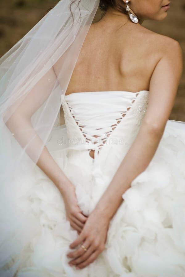 Download Sposa Prima Di Cerimonia Di Nozze Fotografia Stock - Immagine di espousal, governi: 56879876