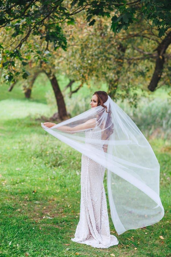 Sposa sensuale ed elegante nel parco immagine stock libera da diritti