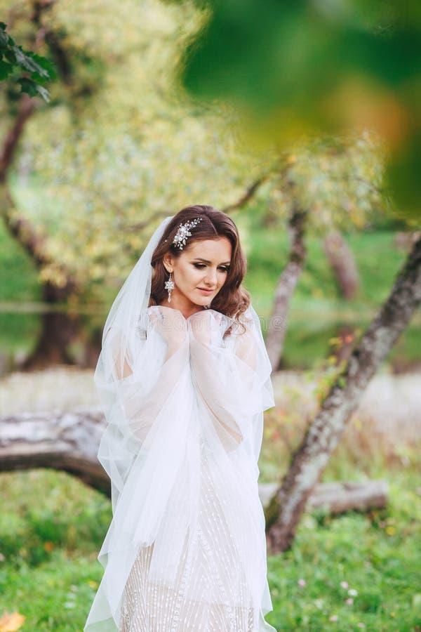 Sposa sensuale ed elegante nel parco fotografie stock libere da diritti
