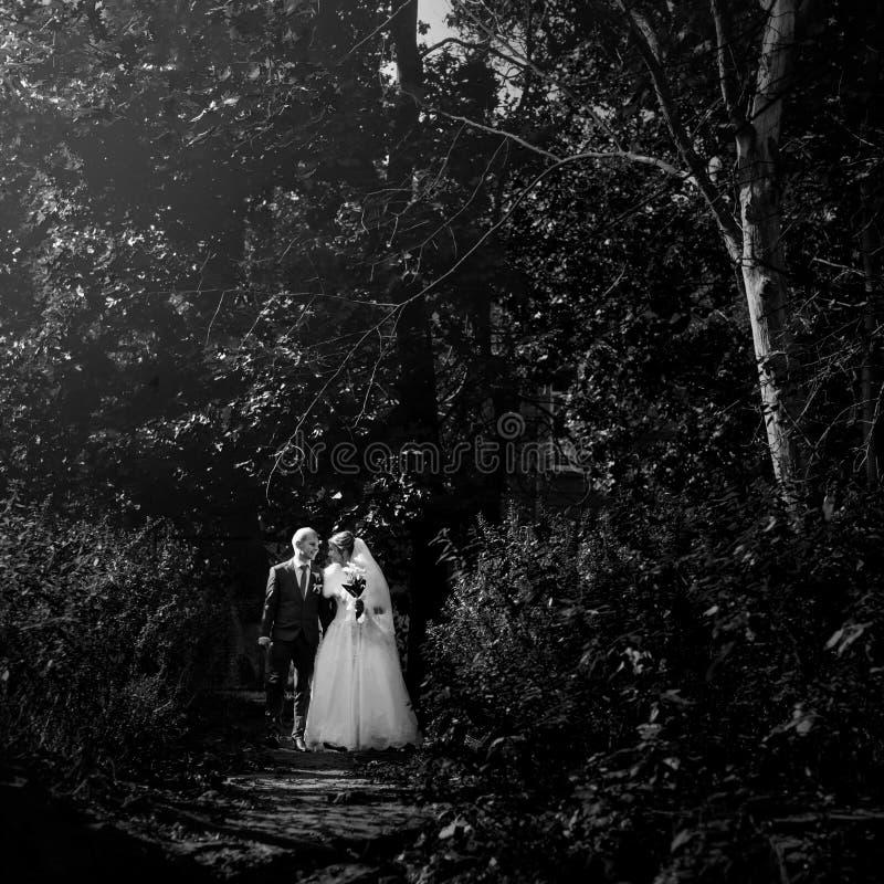 Sposa splendida felice e sposo alla moda che si tengono per mano e che camminano fotografia stock