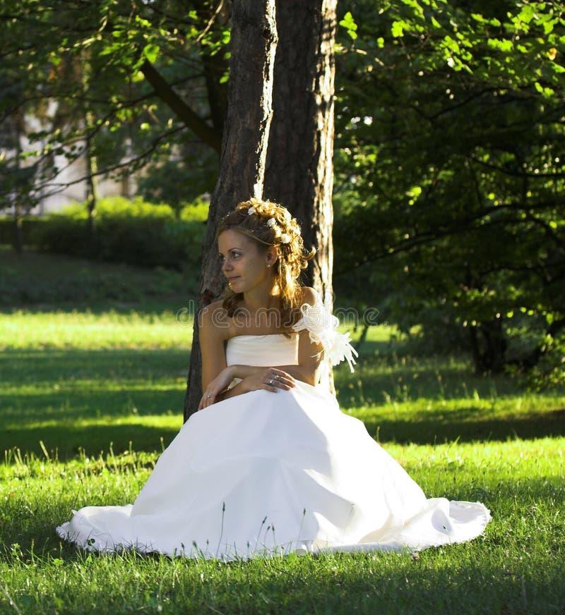 Sposa in vestito da cerimonia nuziale fotografia stock