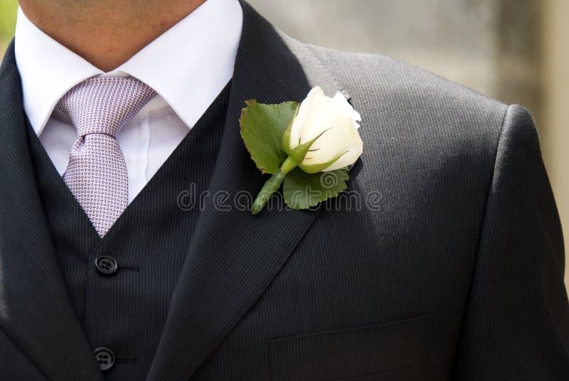 Sposo immagini stock