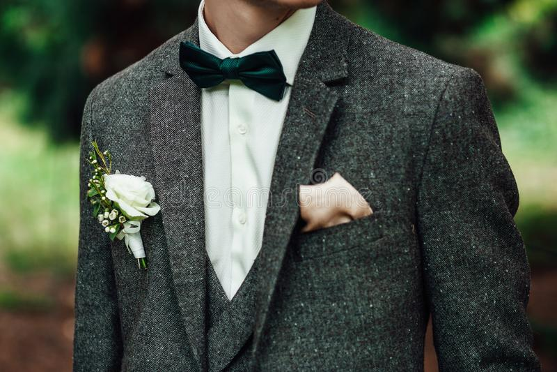 Sposo alla sposa sorridente ed aspettante dello smoking di nozze Groo ricco fotografia stock libera da diritti