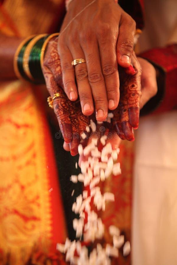 Sposo Bride Ritual fotografia stock libera da diritti