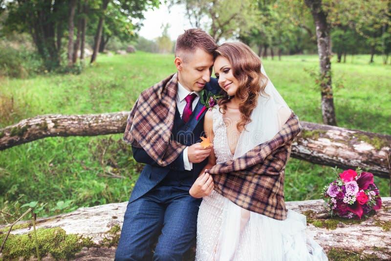 Sposo che abbraccia la sua sposa in parco Coppie di cerimonia nuziale immagine stock