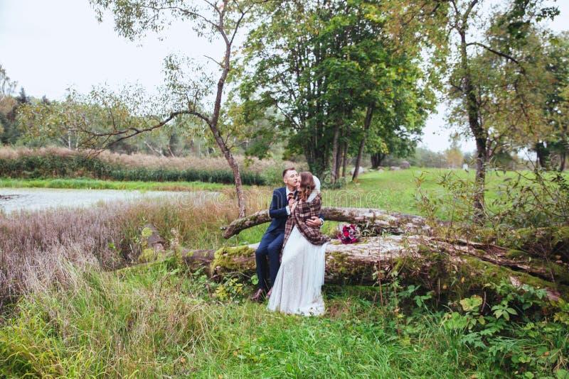 Sposo che abbraccia la sua sposa in parco Coppie di cerimonia nuziale fotografia stock libera da diritti
