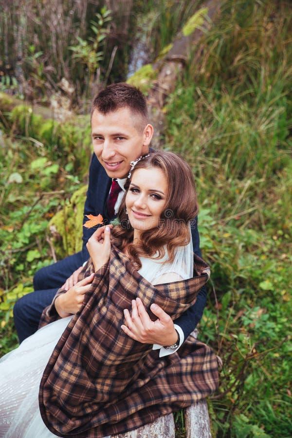 Sposo che abbraccia la sua sposa in parco Coppie di cerimonia nuziale immagine stock libera da diritti