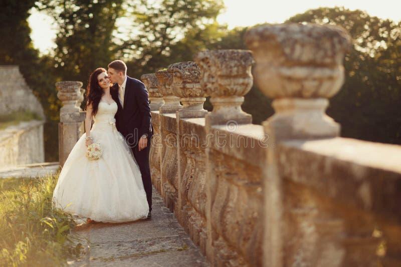 Sposo e sposa che camminano in natura dorata di autunno immagini stock