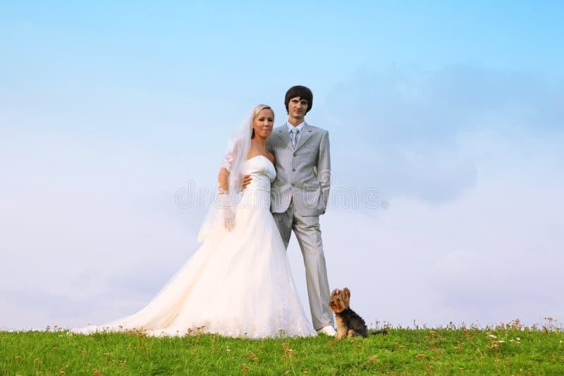 Sposo e sposa che si levano in piedi sull'erba verde fotografie stock